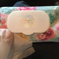 The Honest Company Honest Natural Face, Hand, & Baby Wipes uploaded by Ashlyn B.