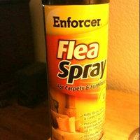 Enforcer Flea Spray For Carpet & Furniture Flea Aerosol 14 Oz uploaded by TAMRA H.