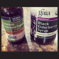 Gaia Herbs Rapid Relief Black Elderberry Syrup uploaded by Deana F.