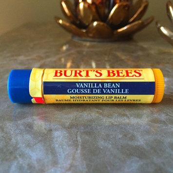 Burt's Bees® Vanilla Bean Lip Balm uploaded by Zahaa A.