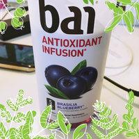 Bai Brasilia Blueberry 18floz uploaded by Jennifer B.