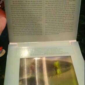Photo of Ocean: A Photicular Book uploaded by Jenny F.