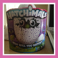 Spin Master Hatchimals Draggles Blue/Purple Egg - One of Two Magical Creatures Inside uploaded by Aba J.