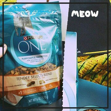 Purina ONE® Dry Food uploaded by Brie S.