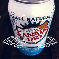 Canada Dry Original Sparkling Seltzer Water uploaded by Emre Y.