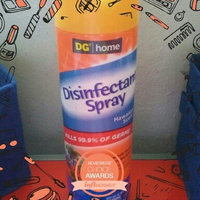 DG Home Disinfectant Spray - Summer Scent uploaded by steven j.