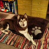 Grreat Choice® Paw Pillow Dog Bed, Brown uploaded by Patty W.