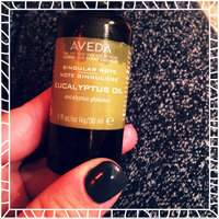 AVEDA Singular Notes, Eucalyptus Oil, 30ml uploaded by Janae B.