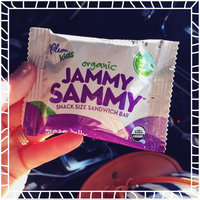 Revolution Foods Organic Jammy Sammy Snack Size Sandwich Bar, Grape Jelly & Peanut Butter, 5-Count Sandwich Bars (Pack of 5) uploaded by Taylor A.