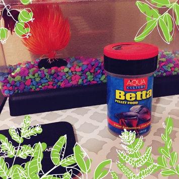 Aqua Culture: Betta Pellet Food, 1 Oz uploaded by Jasmine O.