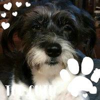 Purina DentaLife Daily Oral Care Small/Medium Dog Treats 25 ct. Pouch uploaded by Tonya H.
