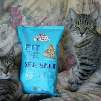 Photo of Popcorn Indiana Chip'ins Sea Salt Popcorn Chips uploaded by Susanne B.
