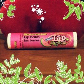 SmileMakers Inc Lip Rageous Assorted Lip Balm -120 Count uploaded by Aylin B.