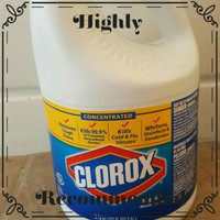 Clorox Concentrated Regular Bleach uploaded by Jasmine B.
