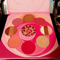 Coastal Scents Blush and Bronzer Palette uploaded by Mariela R.