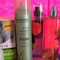 Aveeno Active Naturals Pure Renewal Dry Shampoo uploaded by Crystal P.