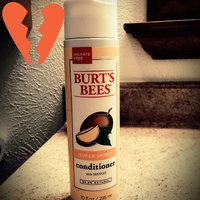Burt's Bees Super Shiny Mango Conditioner uploaded by Paige A.