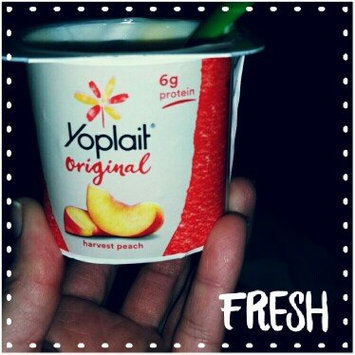 Photo of Yoplait® Original Strawberry and Harvest Peach Low Fat Yogurt Variety Pack uploaded by Ysaura B.