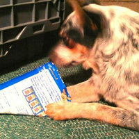 Canine Carry Outs Steak Bites Beef Flavor Dog Snacks, 5-Ounce uploaded by JAIME B.