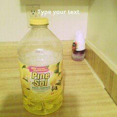 PineSol Pine Sol Lemon Fresh Cleaner 175oz uploaded by Felicia R.