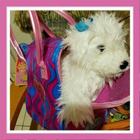 Branford Pucci Pups Diamond Diva Deluxe Bag and Brown Shih Tzu Pup uploaded by michele c.