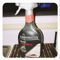 Stainmaster Carpet Care Carpet Stain Remover - 22 oz uploaded by Allison B.