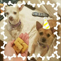 Pedigree® Breathbuster All Dog Sizes Dog Treat uploaded by Abigail B.