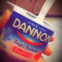Dannon Fruit on the Bottom Lowfat Yogurt Raspberry uploaded by Kelsi T.