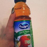 Ocean Spray® 100% Apple Juice 15.2 fl. oz. Plastic Bottle uploaded by Lindsey E.