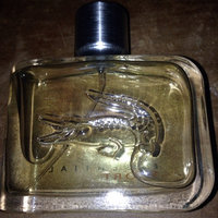 Lacoste Essential Men's Eau De Toilette Spray 2.5 oz uploaded by Randy V.