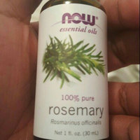 NOW Foods - Rosemary Oil - 1 oz. uploaded by Bunnie C.