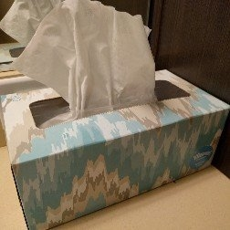 Kleenex® Facial Tissue uploaded by Elise M.