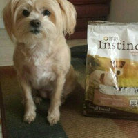 Natures Variety Instinct Limited Ingredient Raw Grain Free Turkey Small Breed Dog Food uploaded by Shea L.