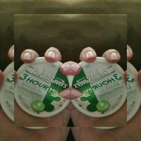 Breath Savers 3 Hour Spearmint Sugar Free Mints uploaded by Sam M.