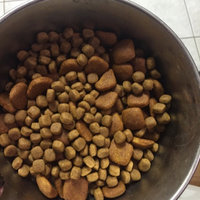 Royal CaninA Golden Retriever Puppy Food uploaded by Amanda W.