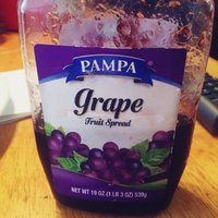 Pampa Jelly, Grape, 19 oz (Pack of 12) uploaded by Reverie V.