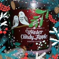 Bath & Body Works 1 X Bath and Body Works Winter Candy Apple 3 Wick Scented Candle 14.5 Oz. 2014 Edition uploaded by chastity p.