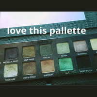 Anastasia Beverly Hills Self-Made Holiday Eye Shadow Palette uploaded by Kayla R.