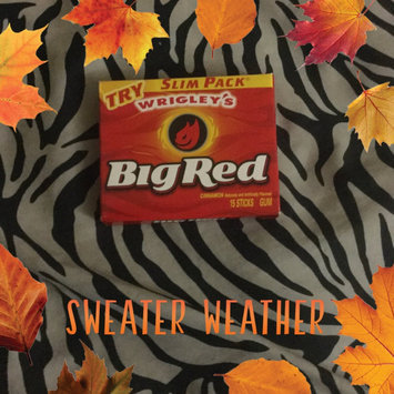 Photo of Wrigley's Big Red Cinnamon Gum Slim Pack - 15 CT uploaded by Faith D.