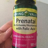 Spring Valley Prenatal Multivitamin/Multimineral Supplement uploaded by Jahara C.