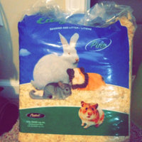 Misc Pestell Easy Clean Pine Bedding & Litter uploaded by Candice S.