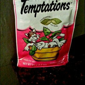 Photo of Whiskas Temptations Blissful Catnip Flavor Cat Treats uploaded by Skie R.