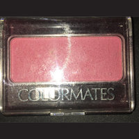 Colormates Blush & Brush Blushed Pack of 4 uploaded by Joseyka T.
