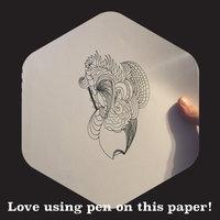 UCreate Sketchbook uploaded by Amber P.