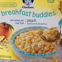 Gerber® Breakfast Buddies® Hot Cereal With Real Fruit Peach uploaded by Dee N.