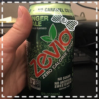 Zevia Zero Calorie Ginger Ale Soda Soft Drink uploaded by Kelly G.