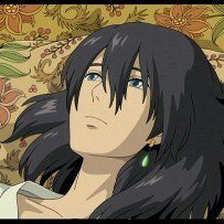 Howl's Moving Castle (Blu-ray + DVD) (Widescreen) uploaded by Norma A. E.