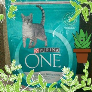 Photo of PURINA ONE® Indoor Advantage Hairball & Healthy Weight Cat Food uploaded by Yvonne L.
