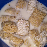 Kellogg's Mini-Wheats Bite Size Frosted Cereal uploaded by Whitney G.