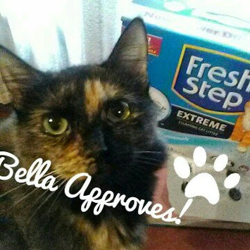 Photo of Fresh Step Lightweight Extreme Cat Litter, Scented (29.4 lb.) uploaded by Jessica B.